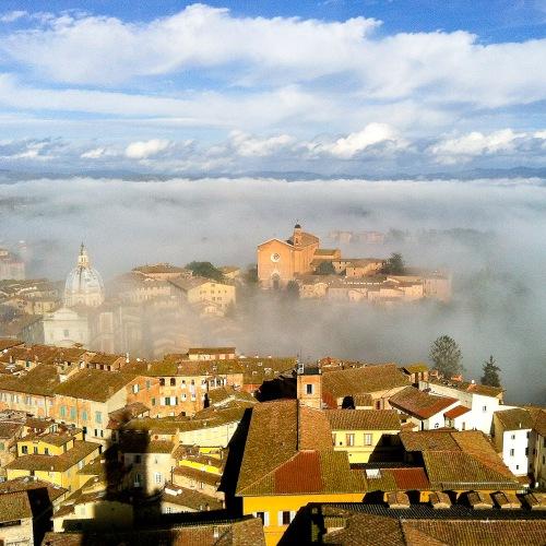 Firenze 2a året bild-12