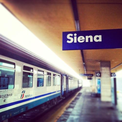Firenze 2a året bild-1