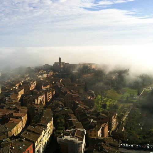Firenze 2a året bild-8