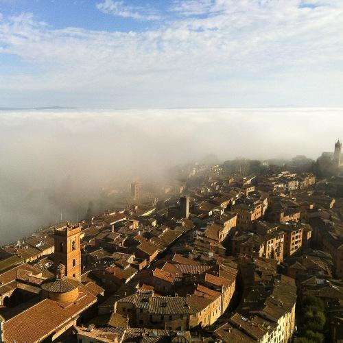 Firenze 2a året bild-9