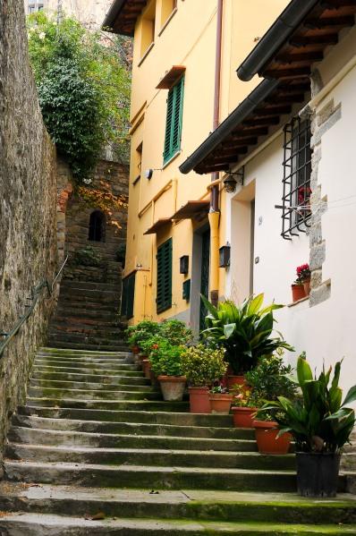 Firenze 2a året DSC_6974