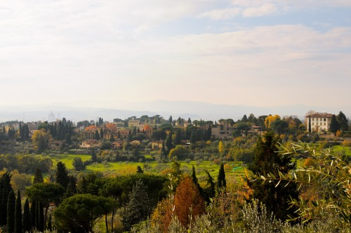 Firenze 2a året DSC_6988