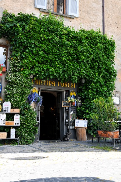 Firenze-Brindisi 2013 DSC_9773